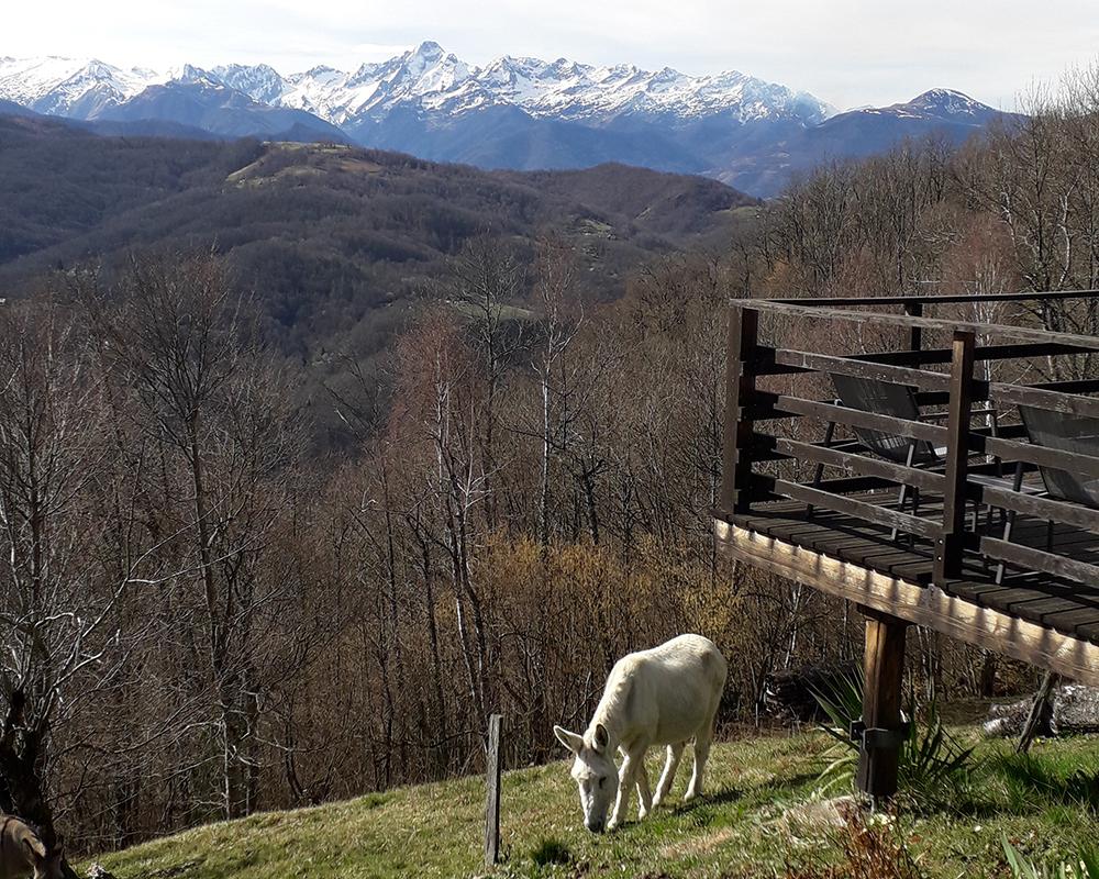 Ferme Rosane | Chambres d'hôtes Ariège Pyrénées - La vue sur le Mont Valier