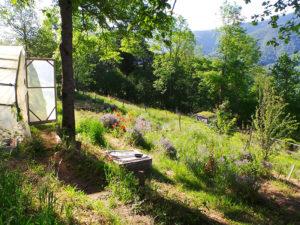 Ferme Rosane | Chambres d'hôtes Ariège Pyrénées - Potager bio
